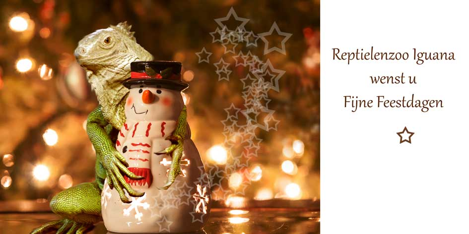 kerstcard17net